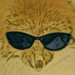 Illustration du profil de mikepmosh